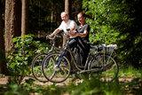 RAP Tour7 II Elektrische fiets in bos